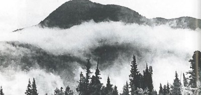 The Siberian taiga. Image: Wikimedia Commons
