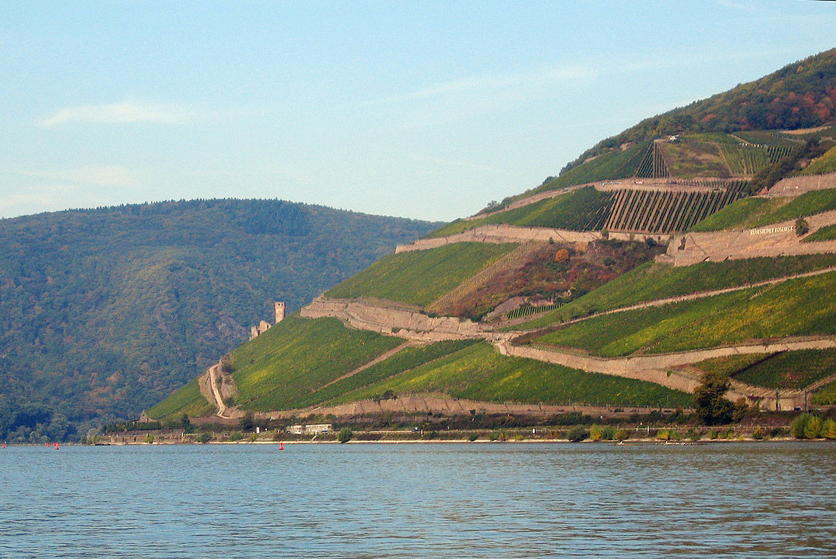 Yeah, those are vineyards along the Rhine. Yes, they are that steep. Image: Wikimedia user Tomas er (CC BY-SA 3.0)