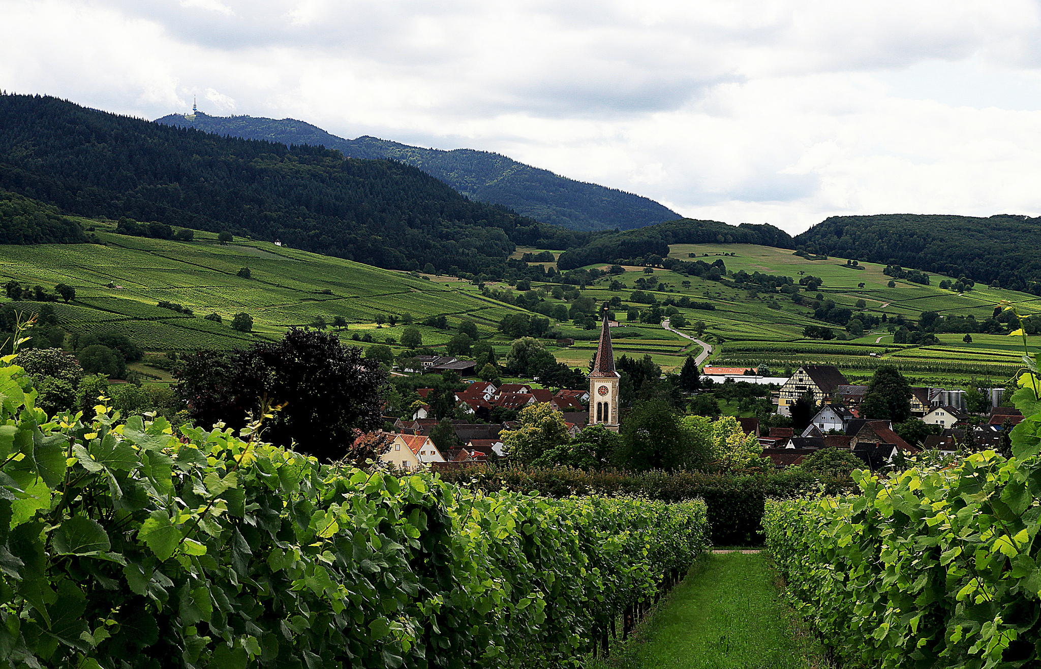 Village of Laufen, Rhine Valley, Germany. Image: Flickr user Peter Rintels (CC BY-ND 2.0)