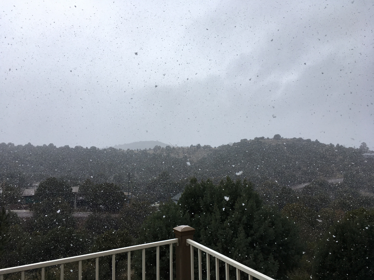Huge flakes. Photo: Jenny Bristol